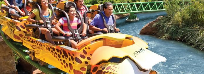 04 cheetah hunt coaster