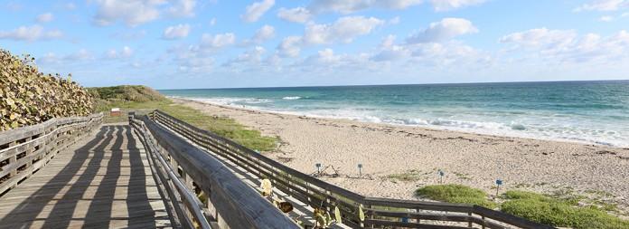 Palm praia