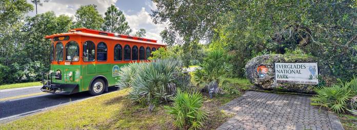 mia Everglades
