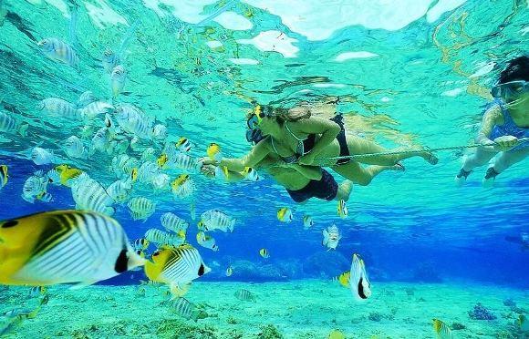 mergulho-ilhas-agua-transparente