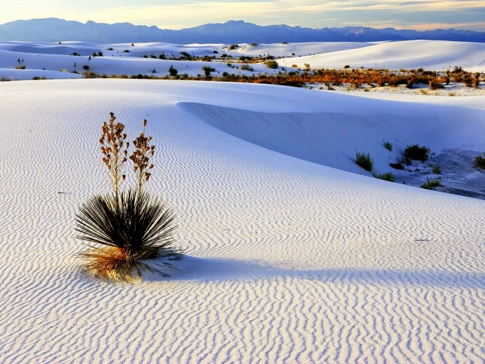 White Sands National Monument1